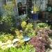 Best Artistic Garden - 1st Place, 2015