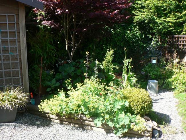 Best Small Garden - 3rd Place 2015